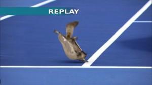Optus : Australian Open