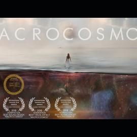 Macrocosmos